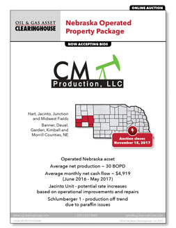 Download Flyer for Asset 51370