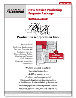Download Flyer for Asset 51411